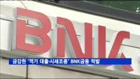 금감원, '꺾기 대출·시세조종' BNK금융 적발