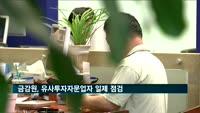 금감원, 유사투자자문업자 일제 점검