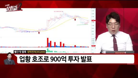 [빨간 맛 종목] 대덕전자(353200)