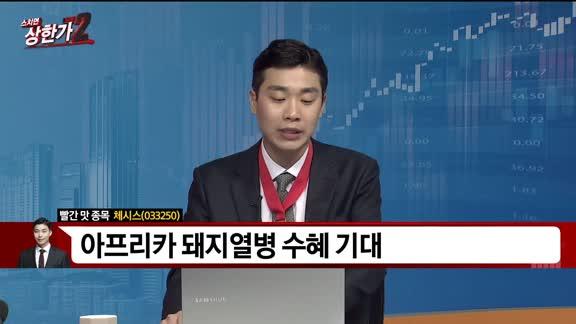 [빨간 맛 종목] 체시스(033250)