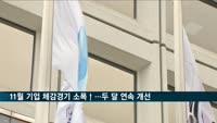 11월 기업 체감경기 소폭 살아나…두 달 연속 개선