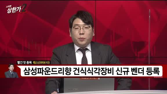 [빨간 맛 종목] 테스(095610)